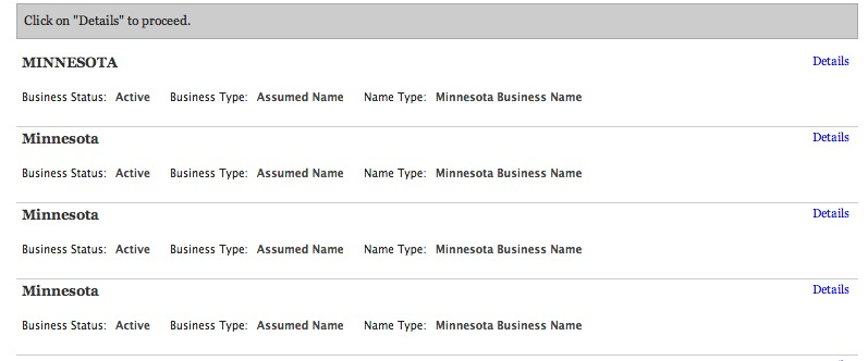 minnesota-business-entities-results-page