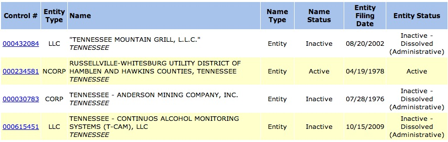 tennessee-secretary-of-state-entity-results-page